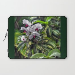 Tropical Orchids Laptop Sleeve