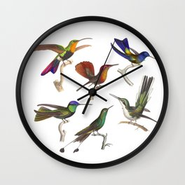 Six Colorful Hummingbirds Wall Clock