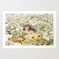 Daisy Puppy  Art Print