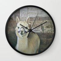 alpaca Wall Clocks featuring White Alpaca  by Laura Ruth