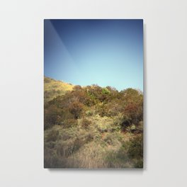 coastal walking trail Metal Print
