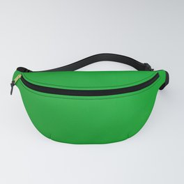 Lime Fanny Pack