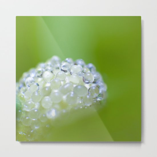 SERIES »MICROPEARLS« II Metal Print
