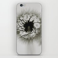 coconut wishes iPhone & iPod Skins featuring Wishes by Skye Zambrana