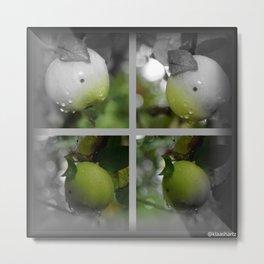 Frucht Metal Print