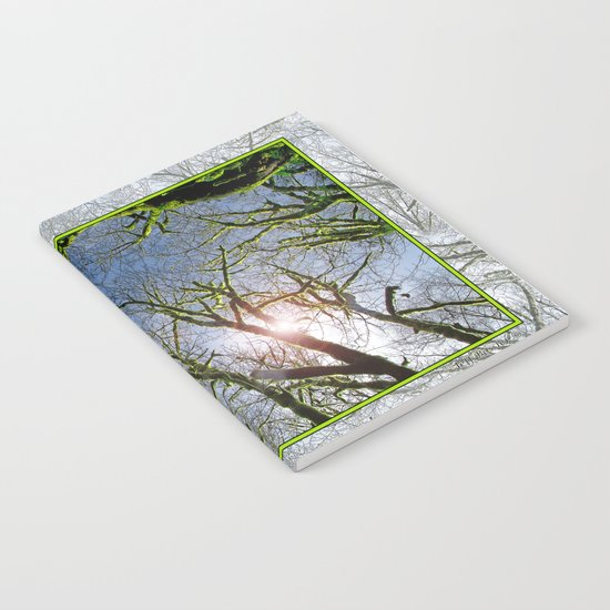 RAIN FOREST MAPLES REACHING FOR THE SKY Notebook