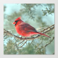 Dreamy Morning (Northern Cardinal) Canvas Print