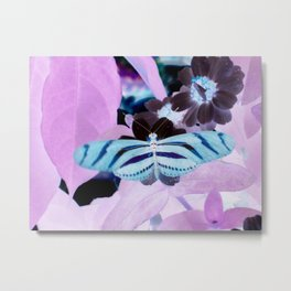 Butterflly 4 Metal Print