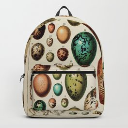 Eggs Vintage Poster by Adolphe Millot Backpack