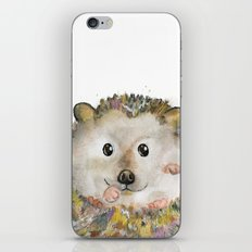 Little Hedgehog iPhone & iPod Skin