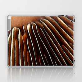 Mushroom grills Laptop & iPad Skin