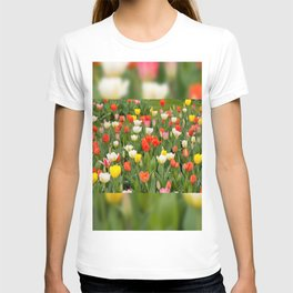 Plenty tulips mix grow in garden T-shirt