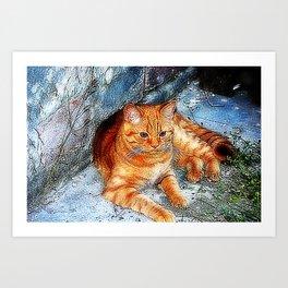 Tiger little cousin Art Print
