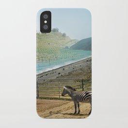 Seabras iPhone Case