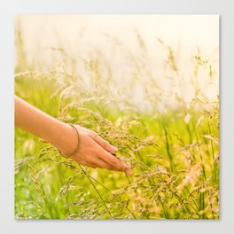 Stroking the summer Canvas Print