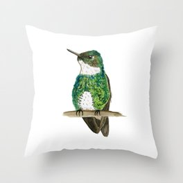 White-throated Hummingbird Throw Pillow