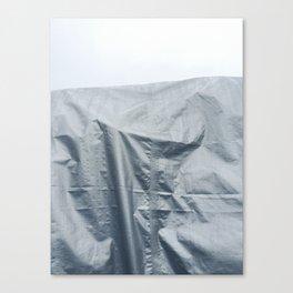 Access Denied Canvas Print