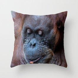 Portrait of a female orangutan Throw Pillow