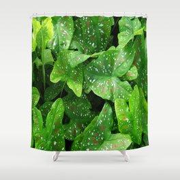 caladium Shower Curtain
