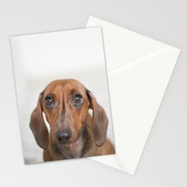 Hungry eyes for dachshund lovers Stationery Cards