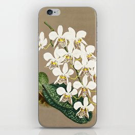 White Orchids Botanical Print on a Tan Background iPhone Skin