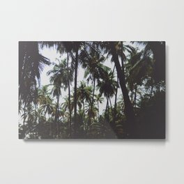 FOREST - PALM - TREES - NATURE - LANDSCAPE - PHOTOGRAPHY Metal Print