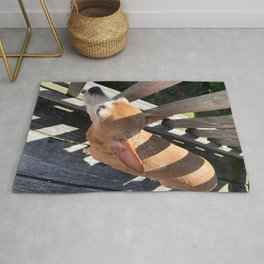 Happy Pup in the Sunlight Rug