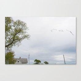 Birds on Bechtel Canvas Print