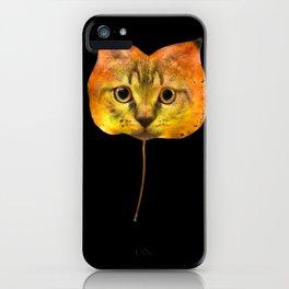 Autumn Cat-7 iPhone Case