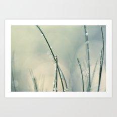 grass bokeh Art Print