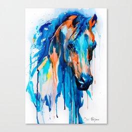 Horseee Canvas Print