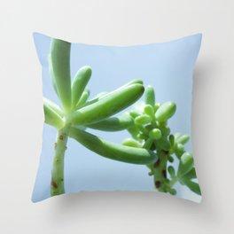 SUCCULENT PALMS Throw Pillow