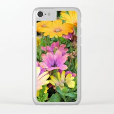 Colorful Spanish Daisies Clear iPhone Case