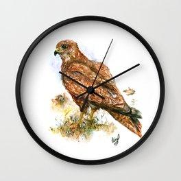 Young hawk Wall Clock