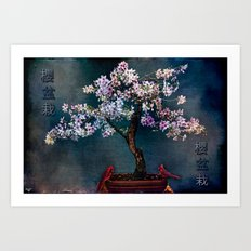 Sakura Bonsai Art Print