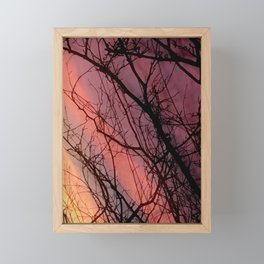 Abstract Photograph Tree with striped sunset sky Framed Mini Art Print