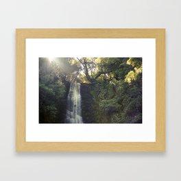 //05-18 FALLS Framed Art Print
