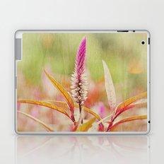 Sunday at the Arboretum: Purple Laptop & iPad Skin