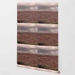 Desert Rain Clouds Wallpaper