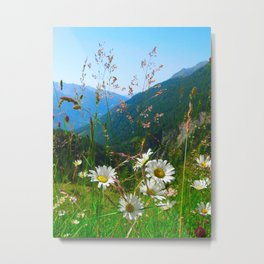 Camomiles in the Alps Metal Print