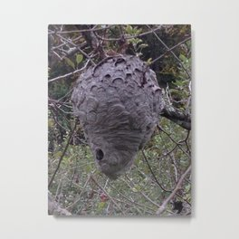 Bee home Metal Print