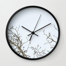 Shrike Wall Clock