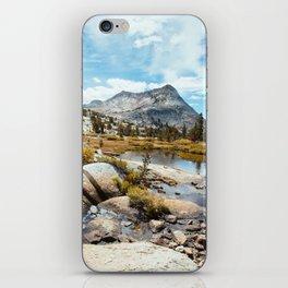 Vogelsang iPhone Skin