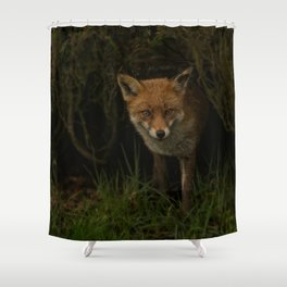 Fox Peeking Through The Hedge Shower Curtain
