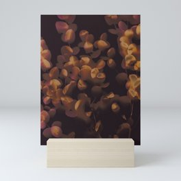 Eucalyptus Leaves Mini Art Print