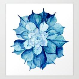 Echeveria Subsessilis Art Print