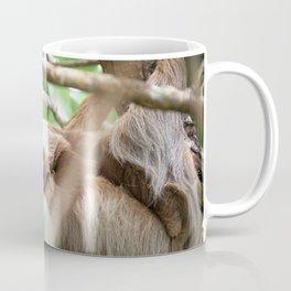 Yawning Baby Sloth - Cahuita Costa Rica Coffee Mug