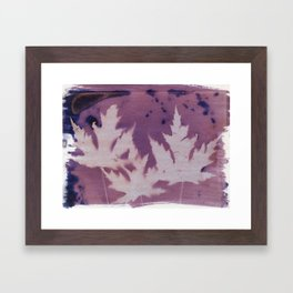 Cyanotype No. 11 Framed Art Print