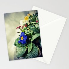 The Flower Pot Stationery Cards