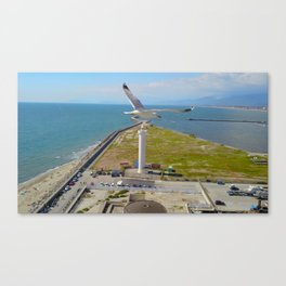 Seagull over Lighthouse... Canvas Print